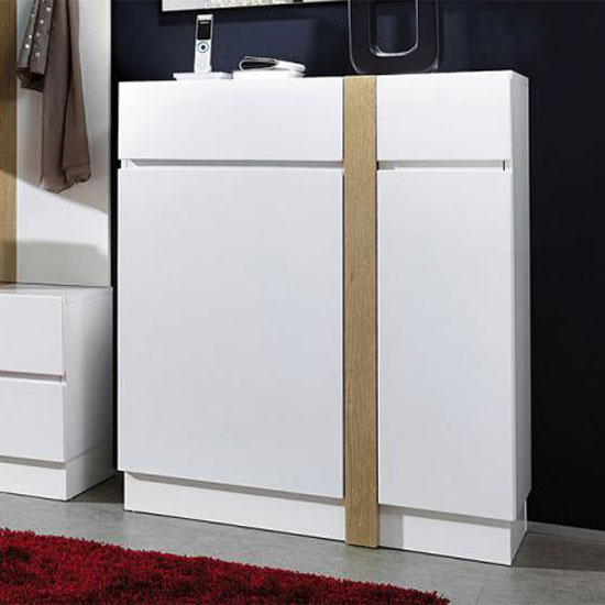 5 Reasons To Get A Shoe Storage Cabinet In White Gloss