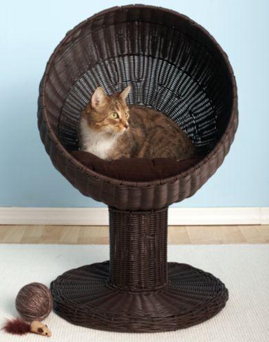 88fa28a157992e34fcb62a0a5d149747 - Would You Let Your Cat Sleep In Your Bed? Reasons Against And Possible Solutions