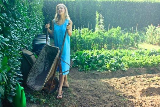 winter gargen - Best Garden Ideas to Get You Ready For Winter